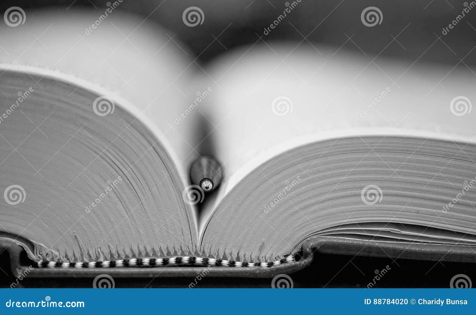 打开与圆珠笔的书
