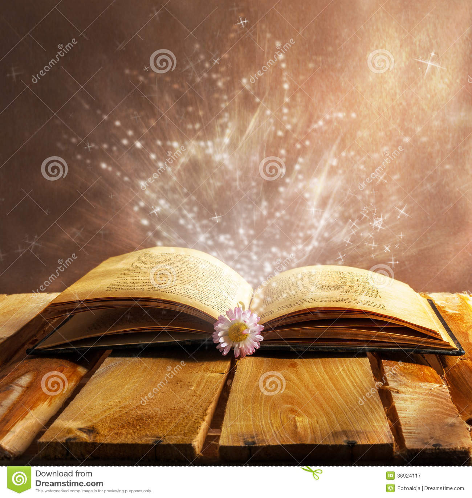 打开书魔术