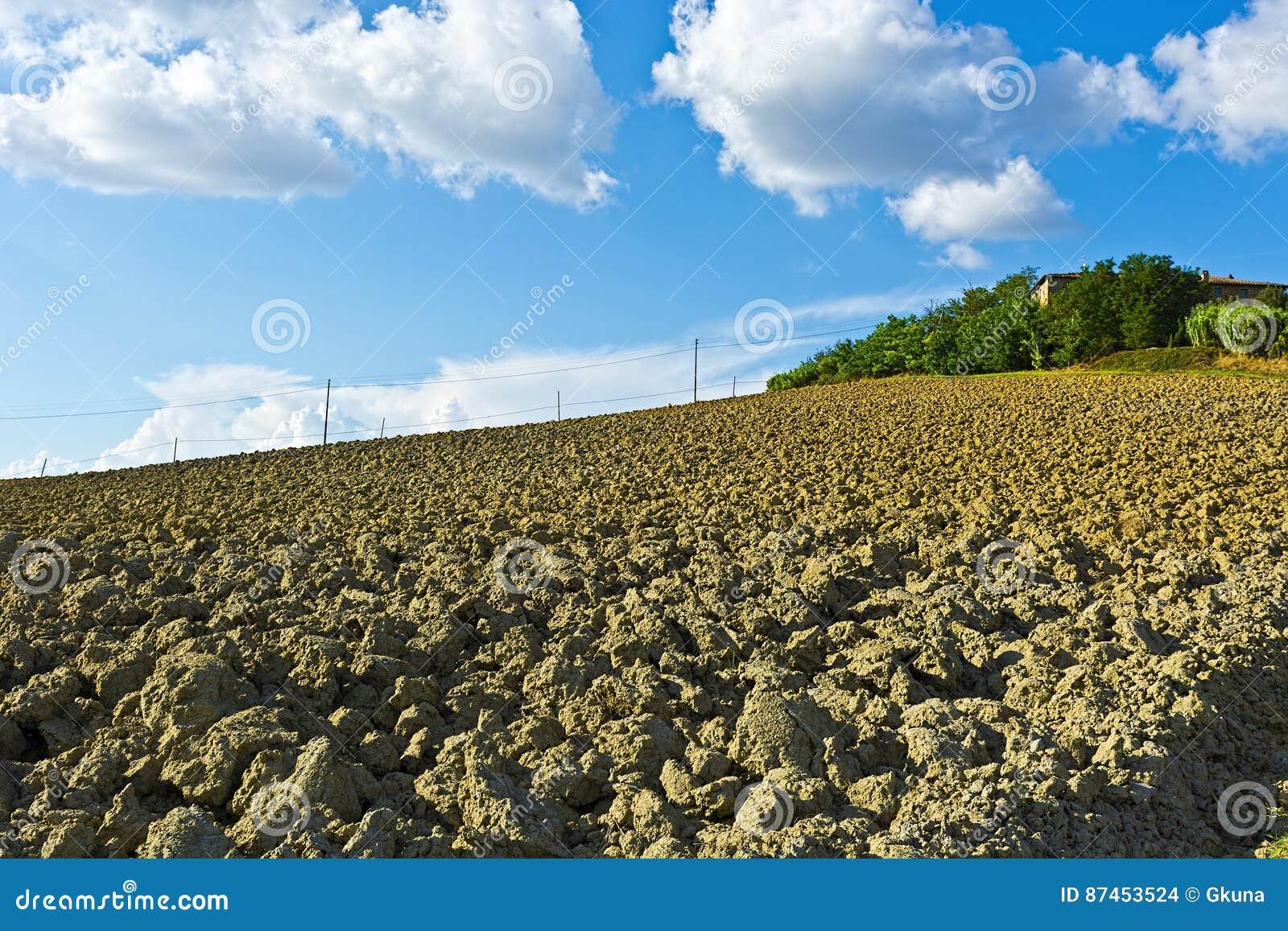 托斯卡纳的被犁的小山