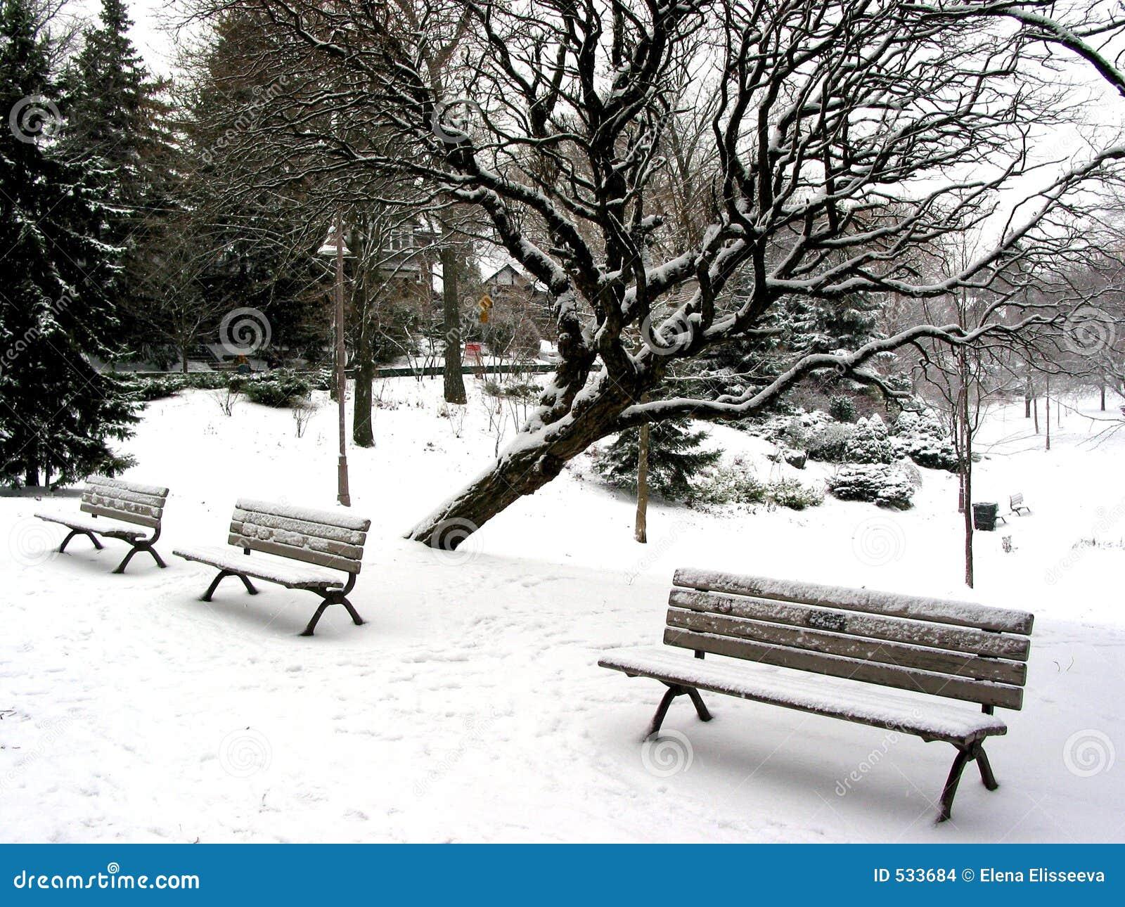 Download 把冬天换下场 库存照片. 图片 包括有 季节, 公园, 冷颤, 雪花, 风暴, 冻结, 冬天, 结构树, 降雪 - 533684