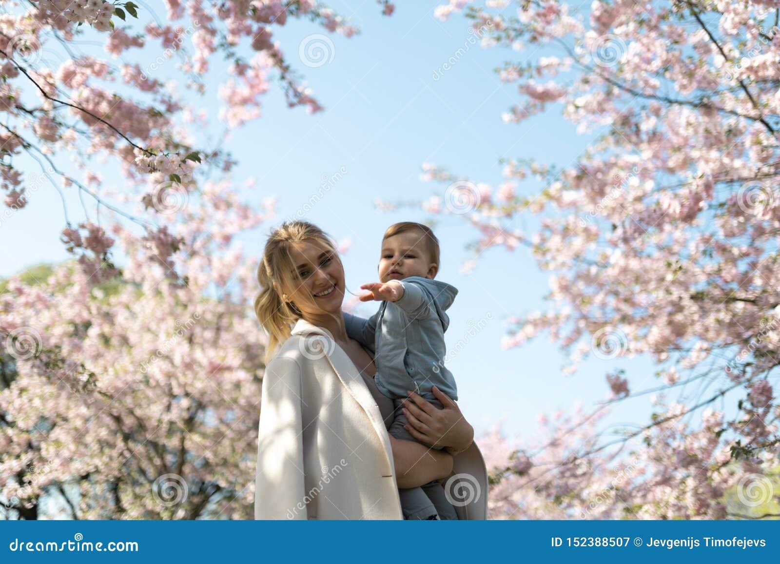 抱她的小小儿子男孩孩子的年轻母亲妈妈在与落的桃红色瓣的开花的佐仓樱桃树下和