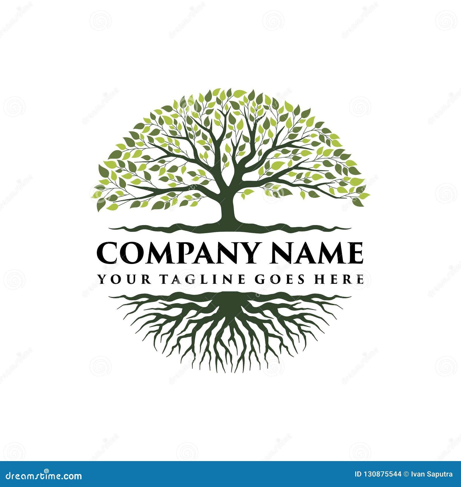 抽象充满活力的树商标设计,根传染媒介-生物演化谱系图解商标设计启发