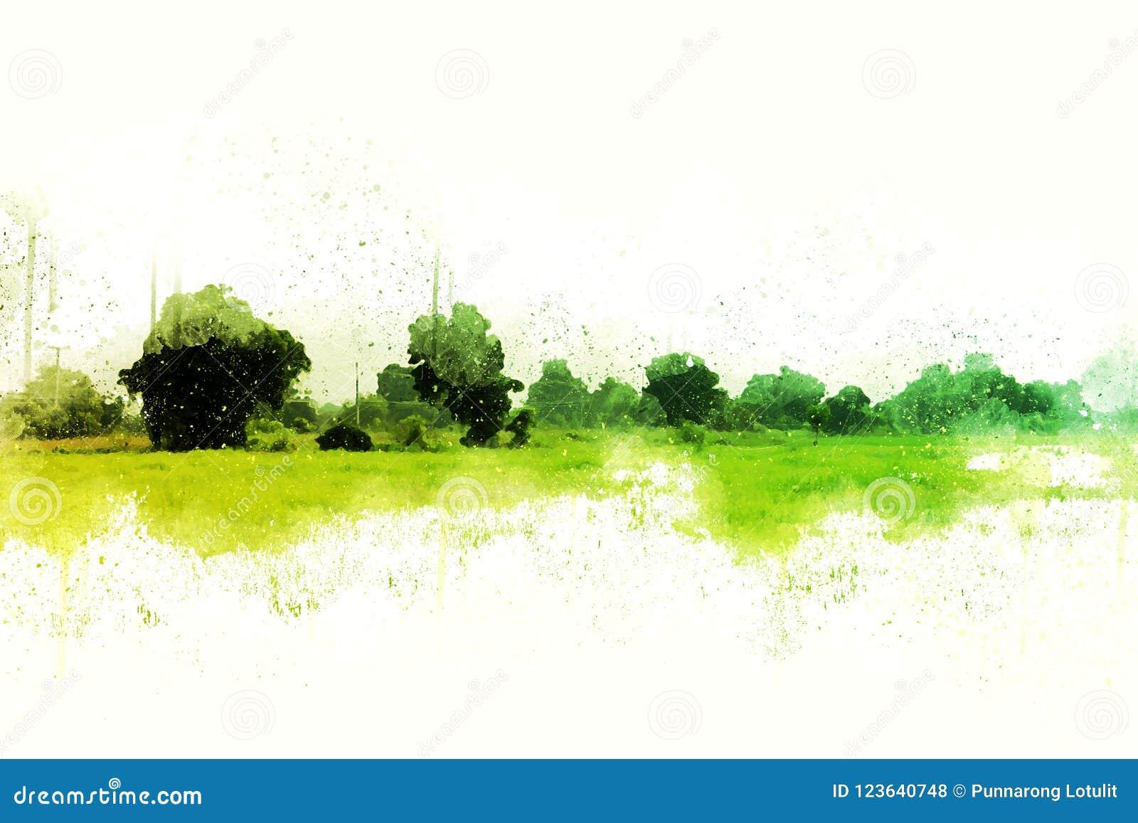 抽象绿色树和领域风景水彩
