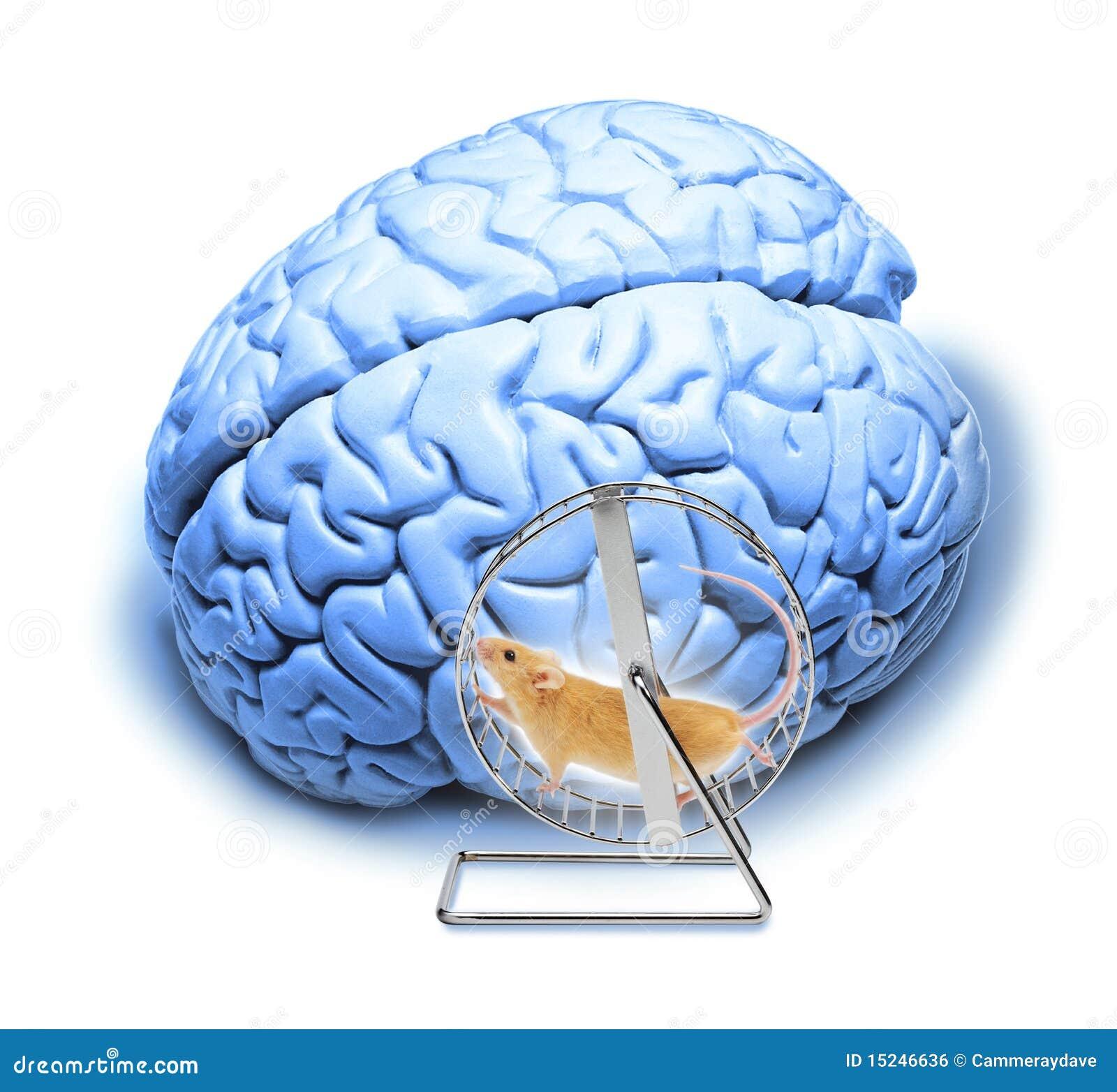 抽象脑子执行重点