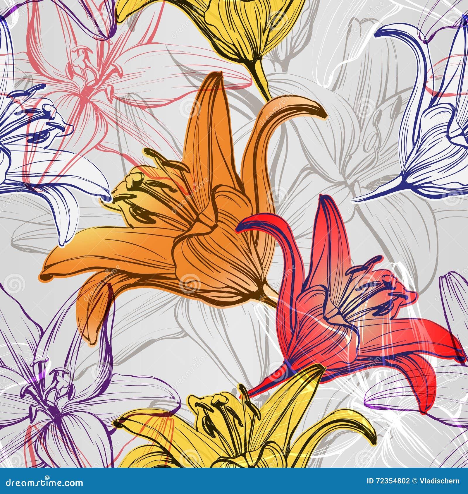 抽象花卉开花的百合背景纹理手拉的传染媒介例证
