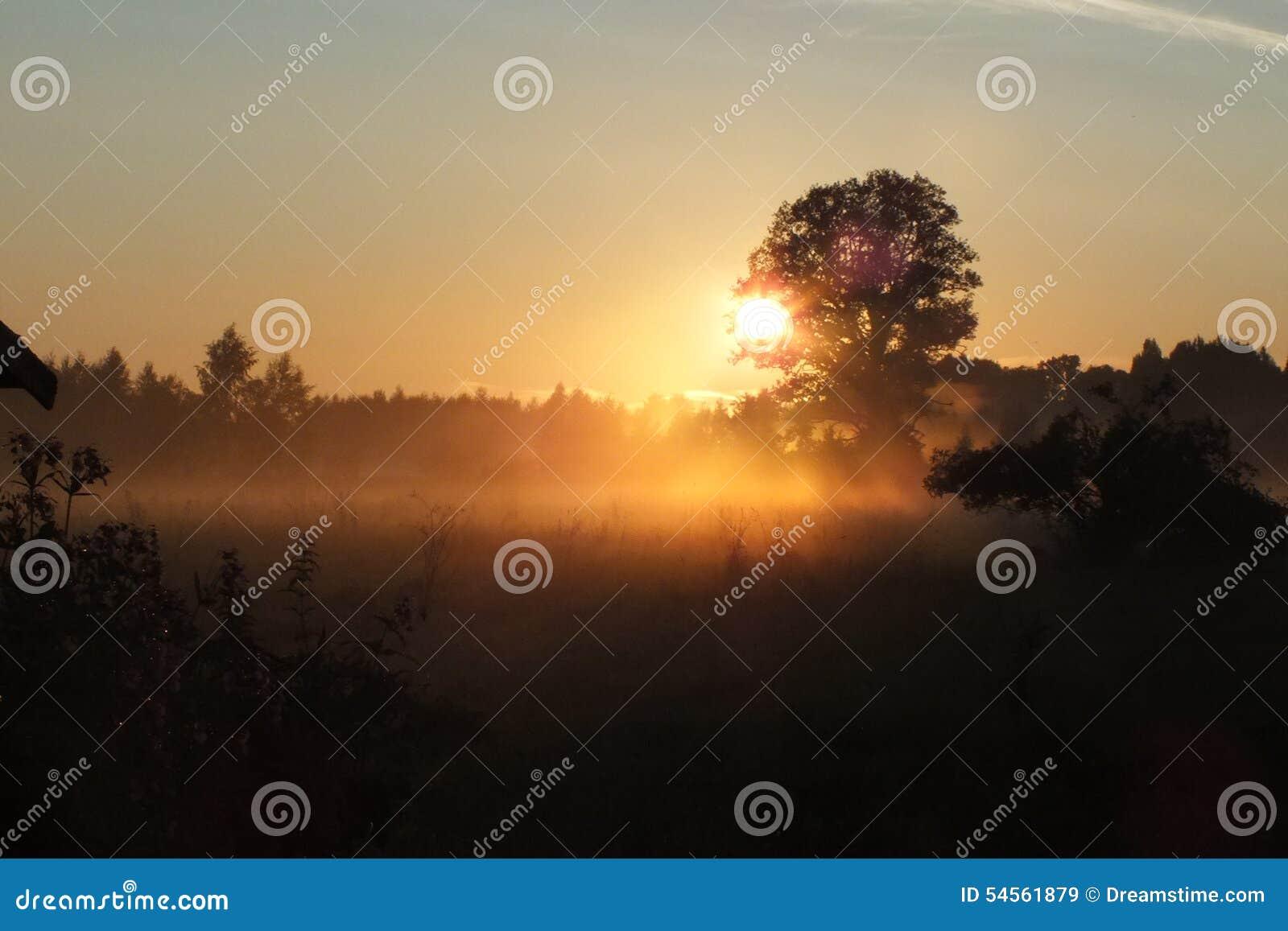 拉脱维亚卢巴纳领域太阳集合