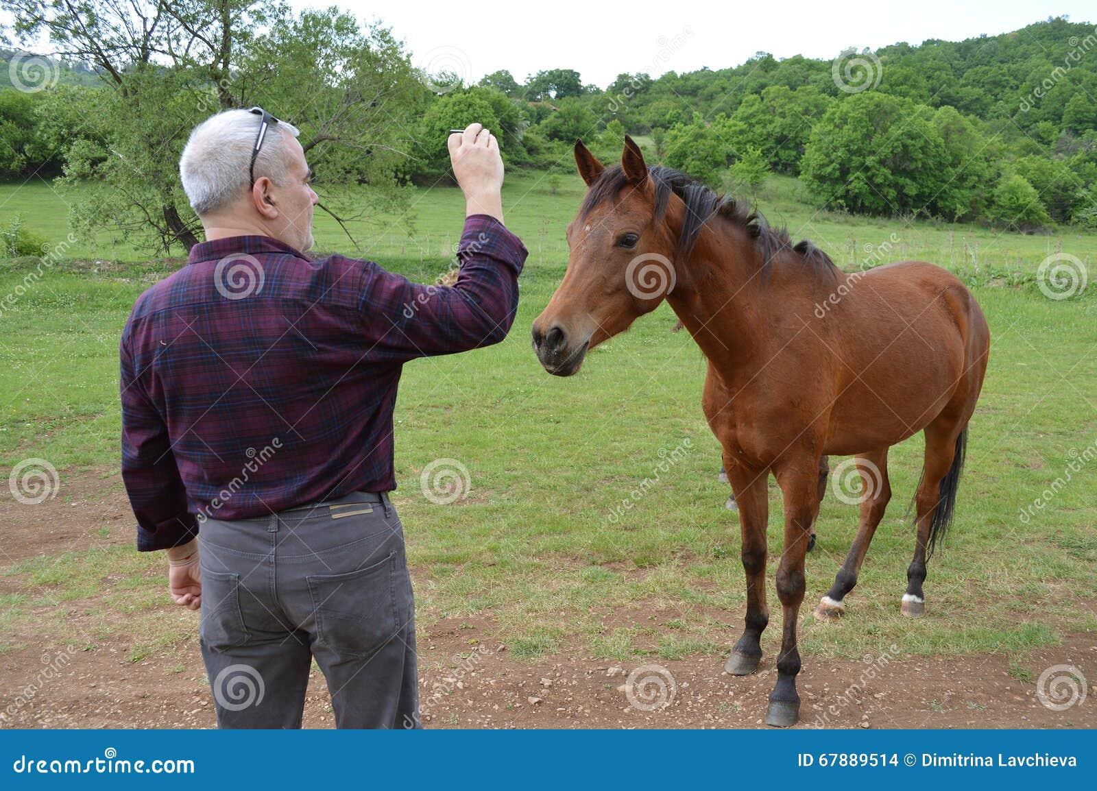拍幼小马的照片人