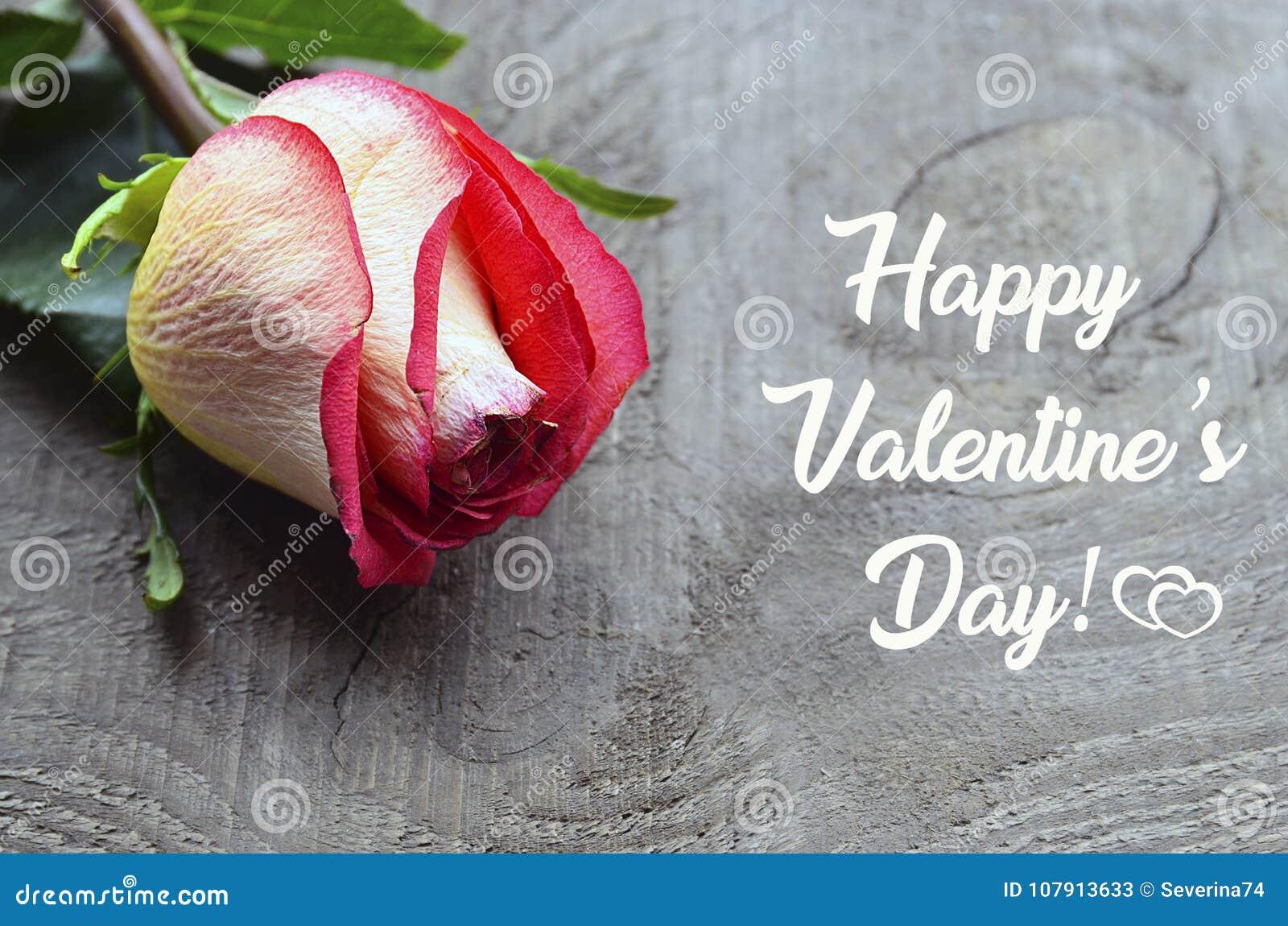 招呼看板卡的日愉快的华伦泰 在老木背景的美丽的桃红色玫瑰 St华伦泰` s天或爱概念