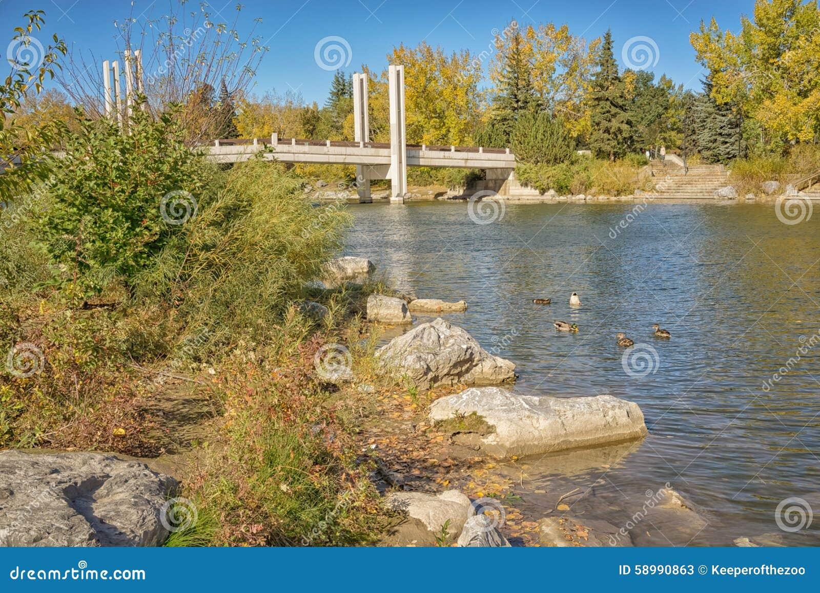 围拢Jaiper桥梁的秋天