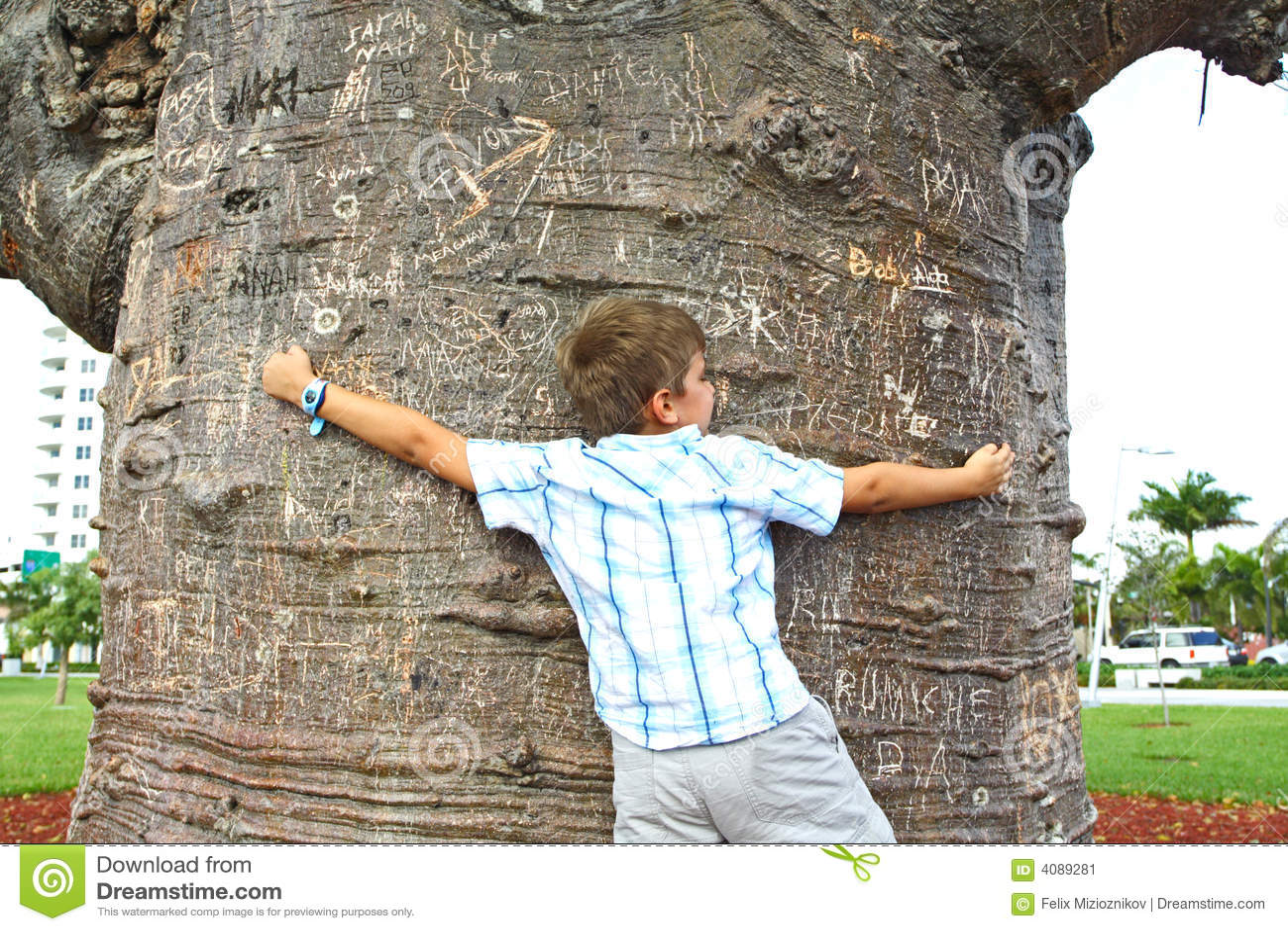 拥抱结构树的男孩