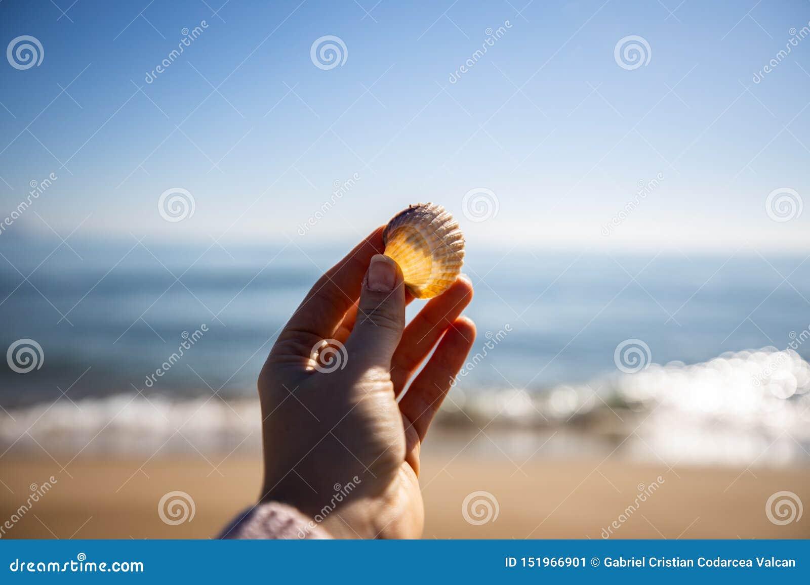 拿着与被弄脏的烽火台的妇女手海壳在背景