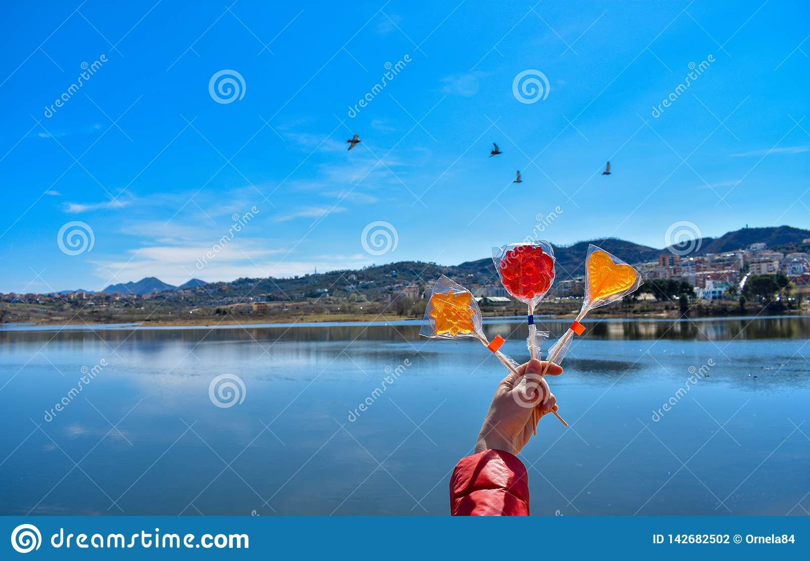 拿着五颜六色的棒棒糖的人的手反对人工湖