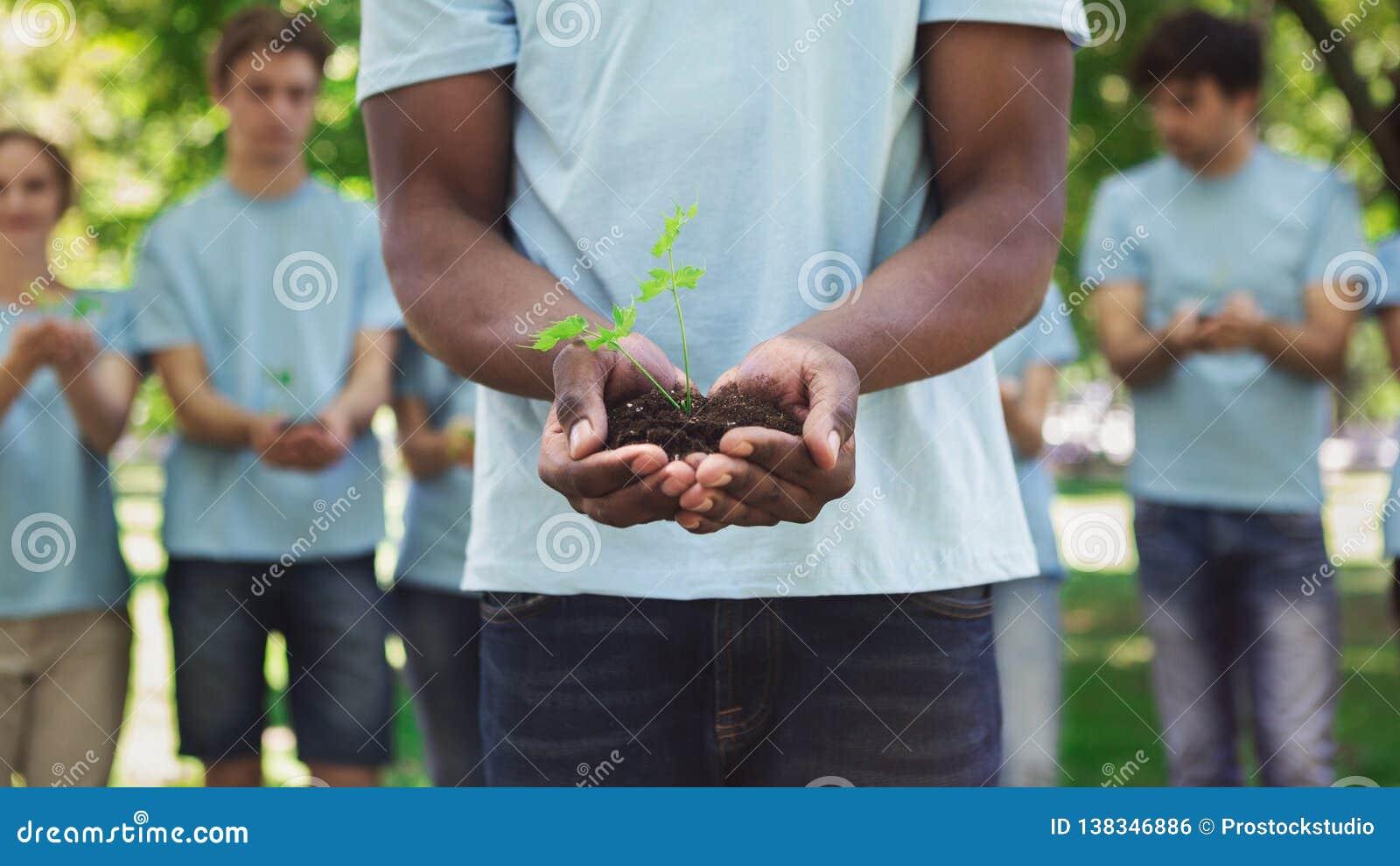 拿着土壤的非裔美国人的人手植物