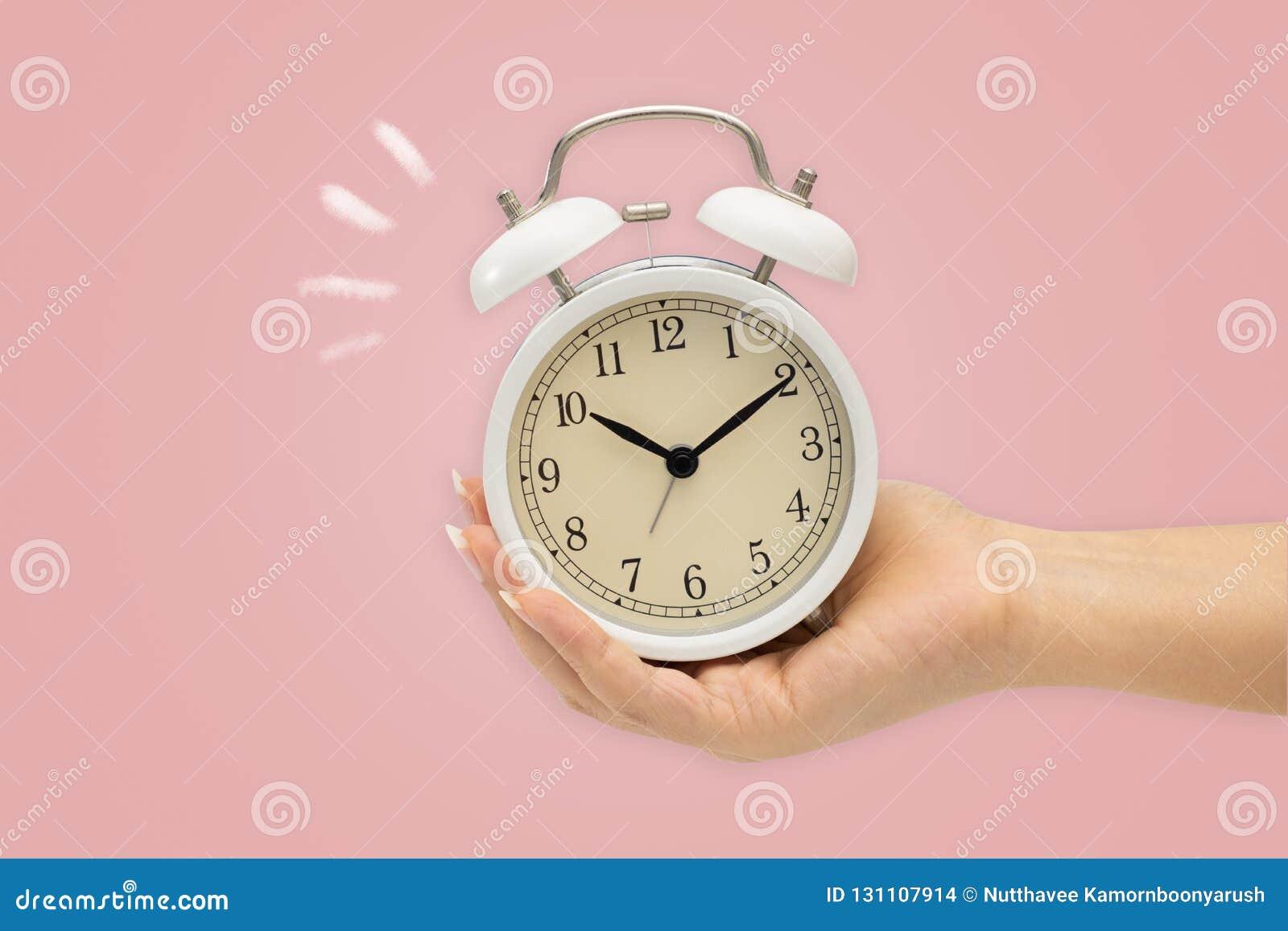 拿着在桃红色bacground的手闹钟