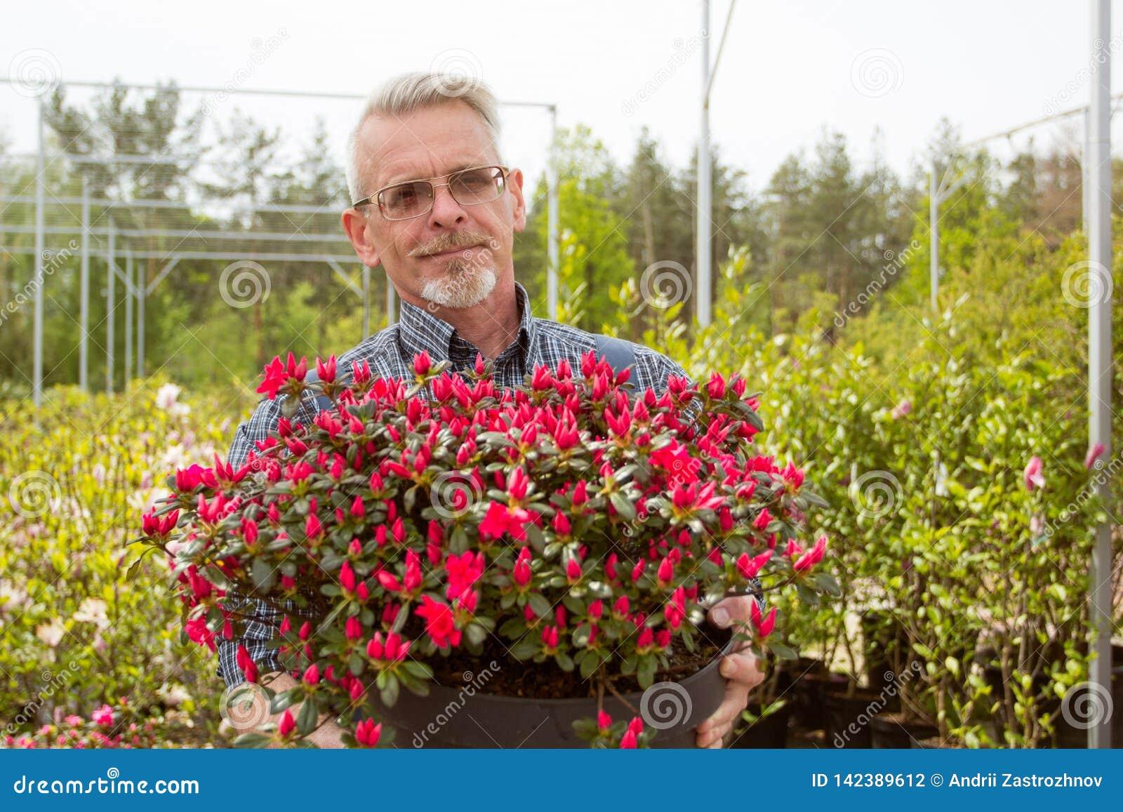 拿着有红色花的花匠一个大罐