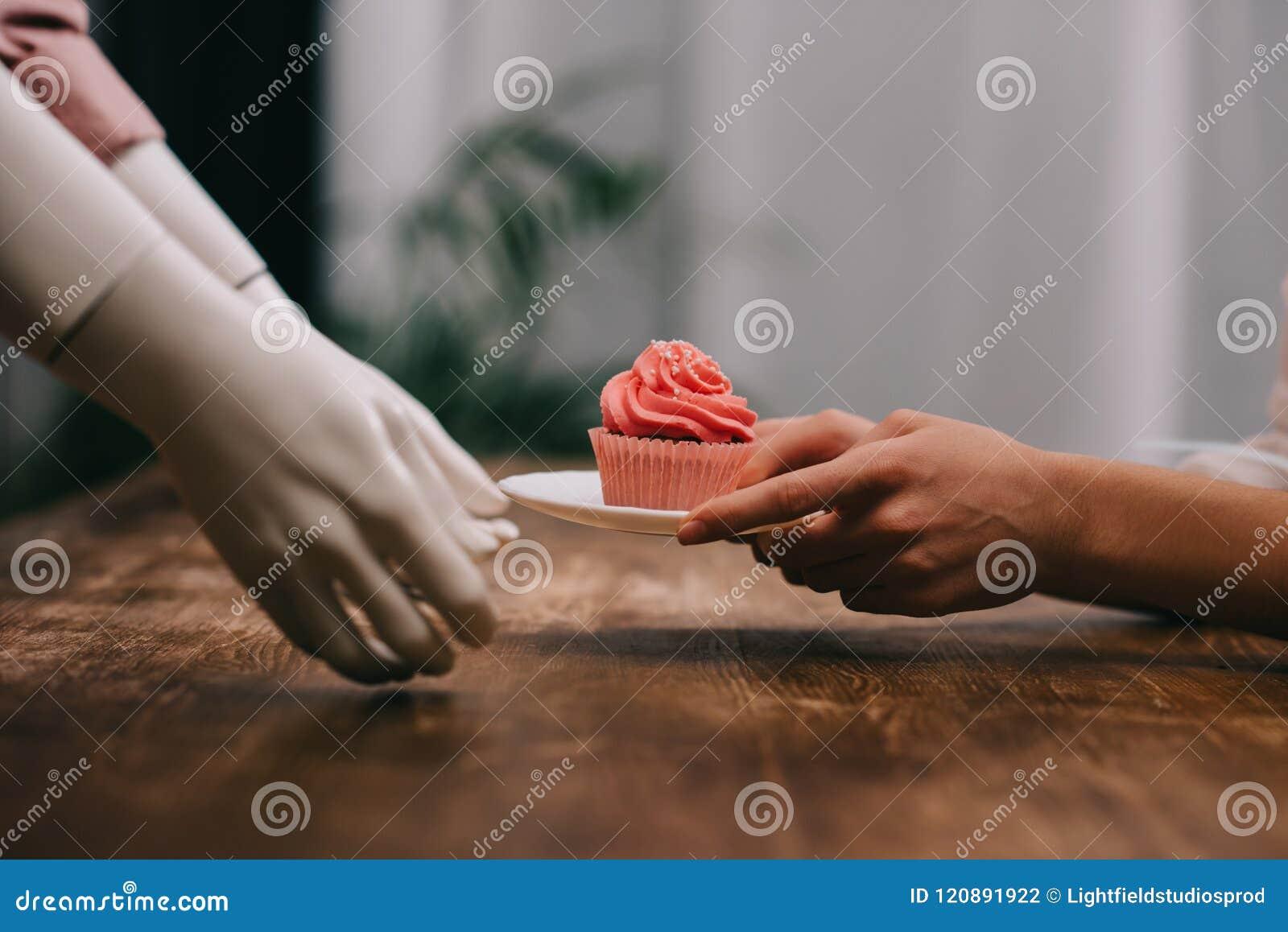 拿着板材用杯形蛋糕的妇女和时装模特播种的射击,无报答