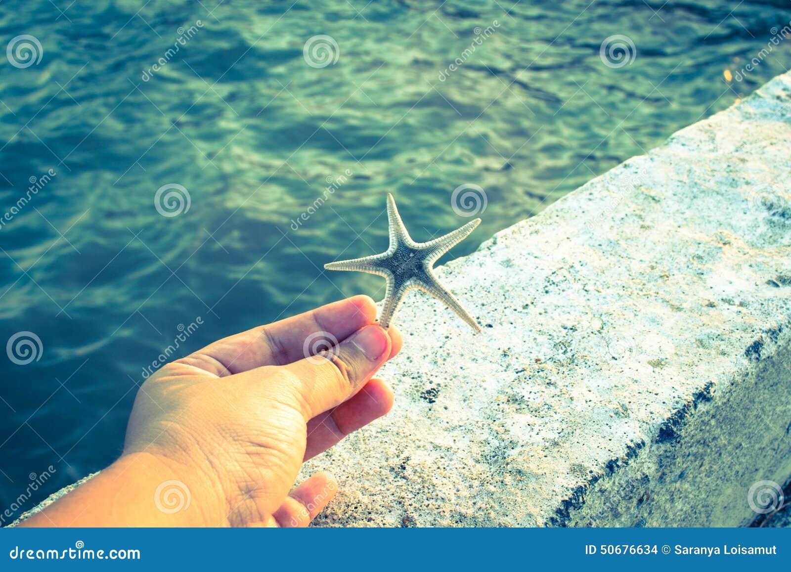 Download 拿着海星的手 库存照片. 图片 包括有 水族馆, 海星, 海洋, 星形, 火箭筒, 自然, 装饰, 本质 - 50676634