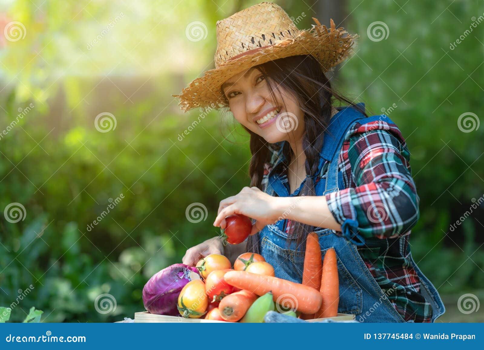 拿着菜的篮子亚裔愉快的妇女农夫有机在葡萄园里户外