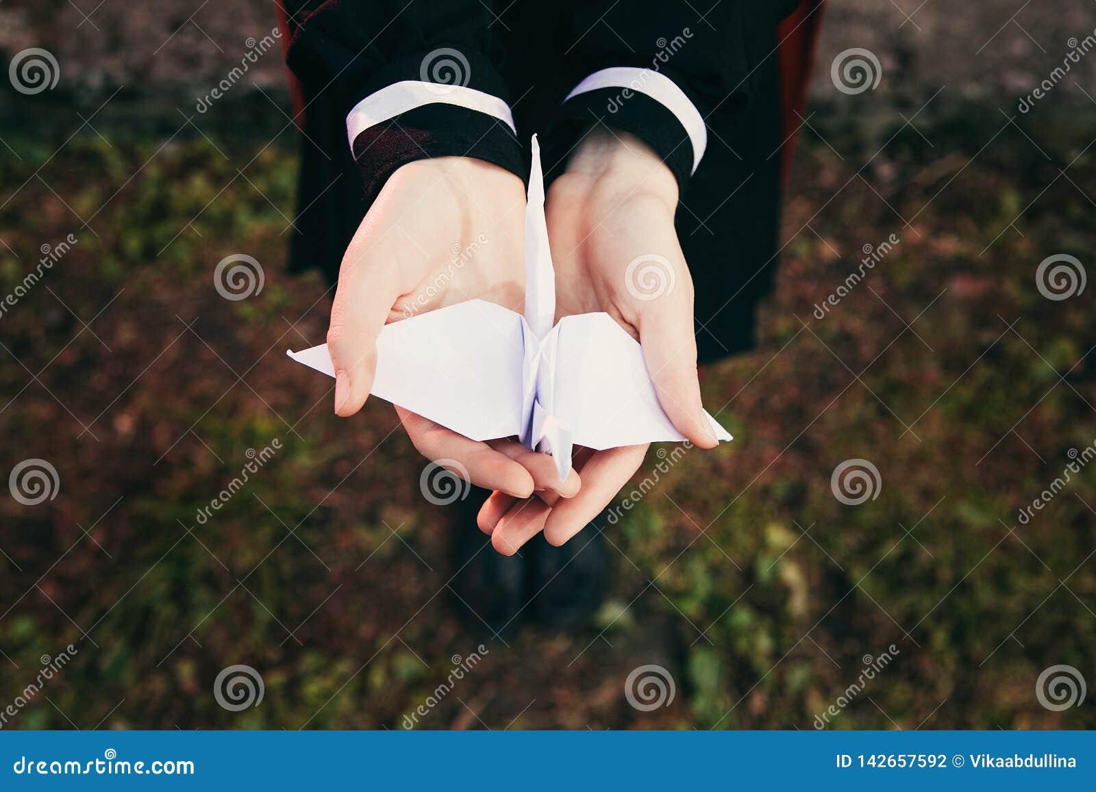 拿着origami纸起重机鸟有草,女孩穿戴日本校服背景的女性女孩手