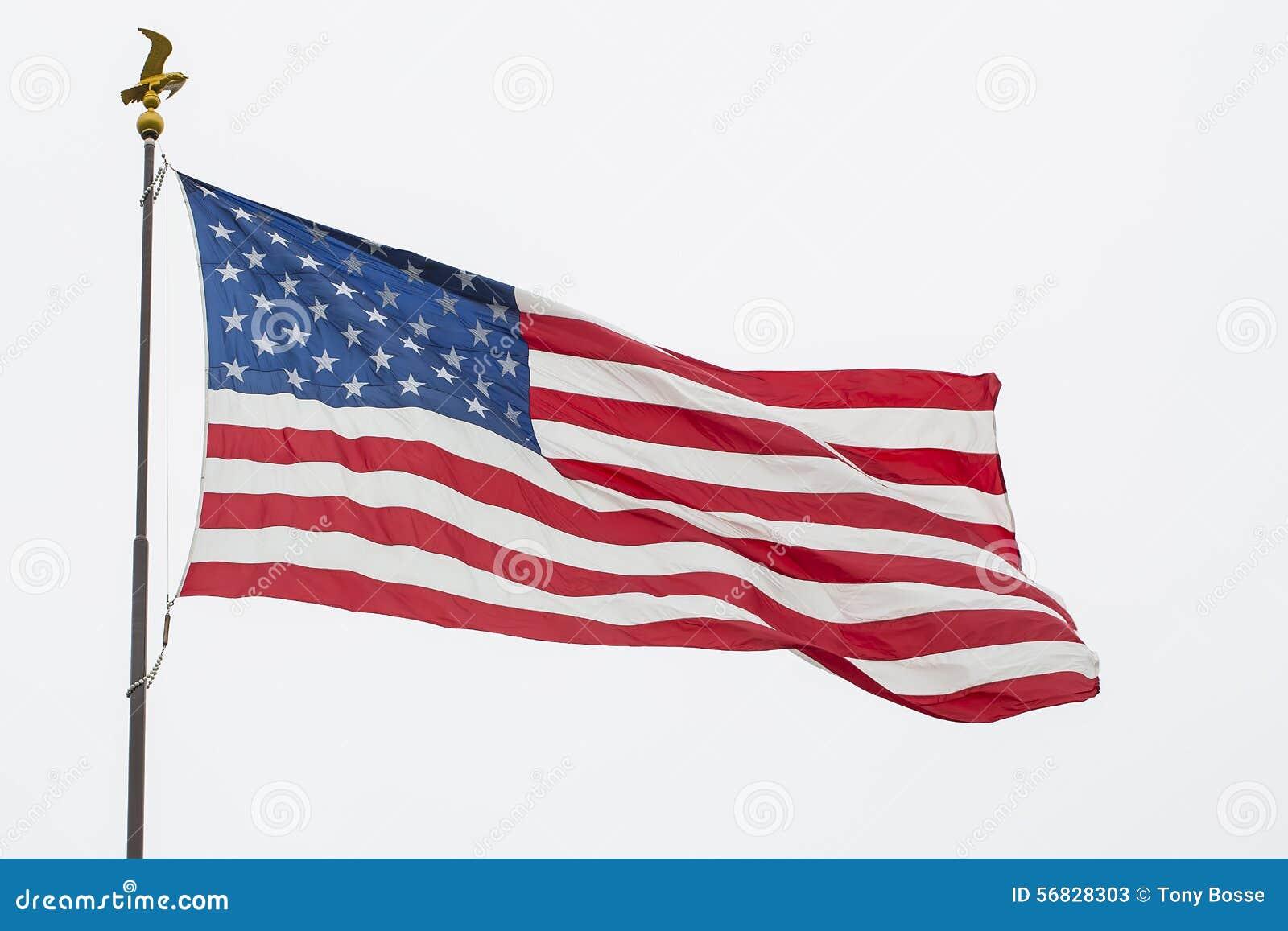 挥动的美国国旗和老鹰波兰人,被隔绝
