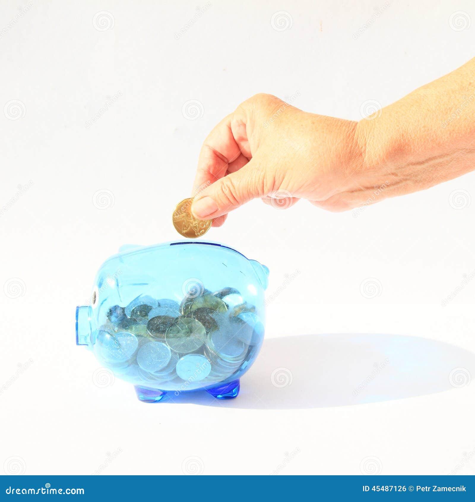 挽救猪在手中充满硬币