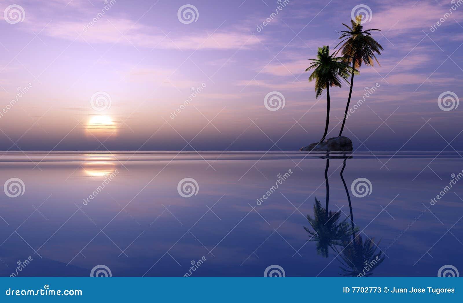 掌上型计算机热带日落的结构树