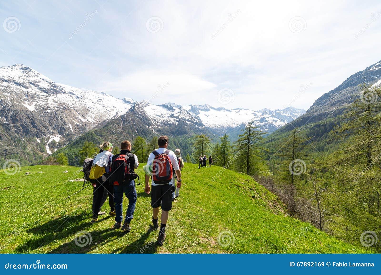 探索阿尔卑斯,室外活动的小组远足者在夏天