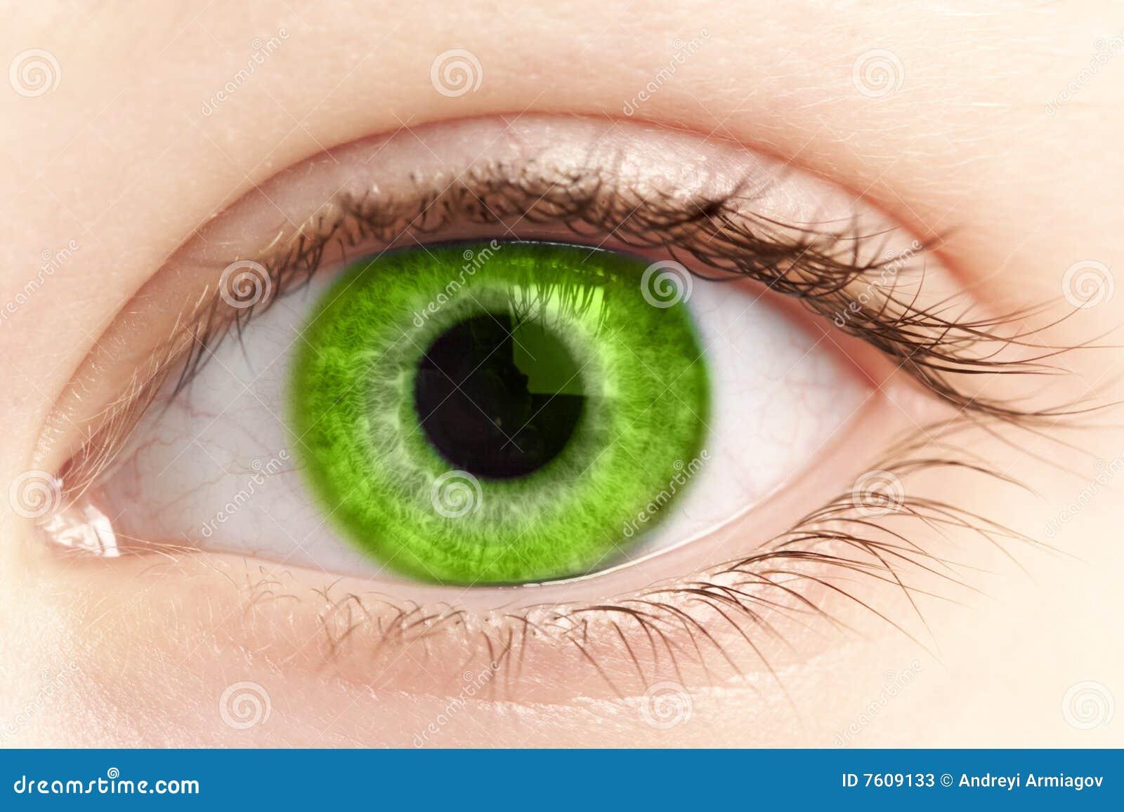 接近的眼睛绿色人员