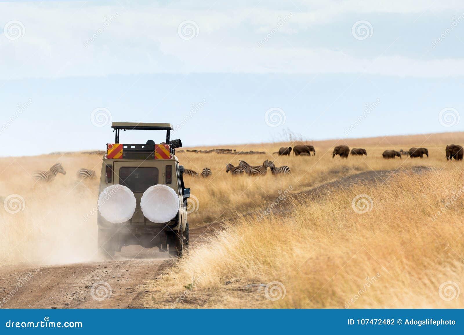 摄影师在比赛驱动的徒步旅行队车