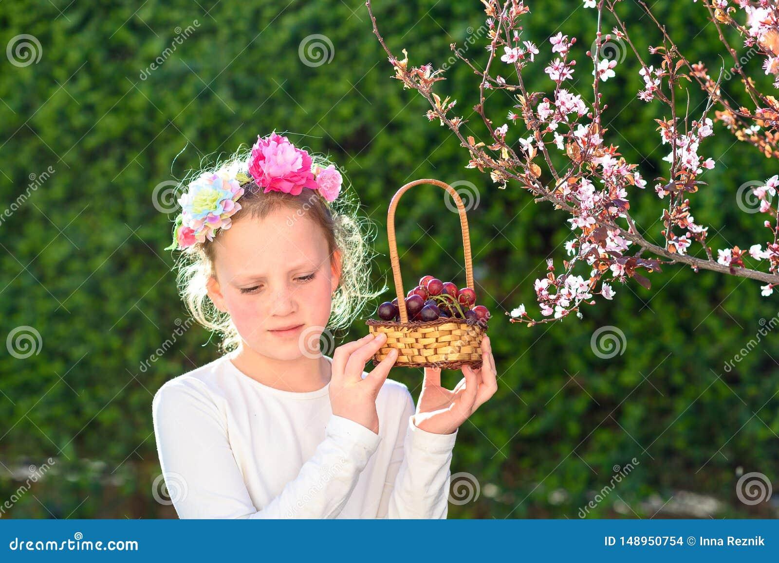 摆在用新鲜水果的逗人喜爱的女孩在晴朗的庭院里 有葡萄篮子的女孩
