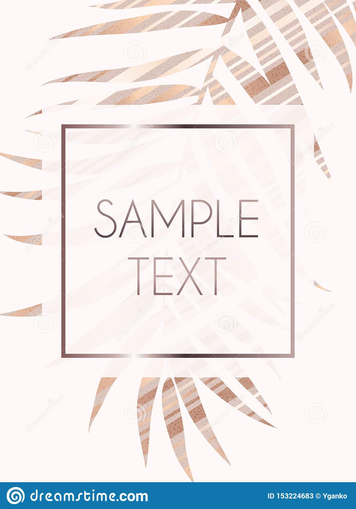 摘要罗斯金子Beautifil棕榈树叶子剪影背景传染媒介例证