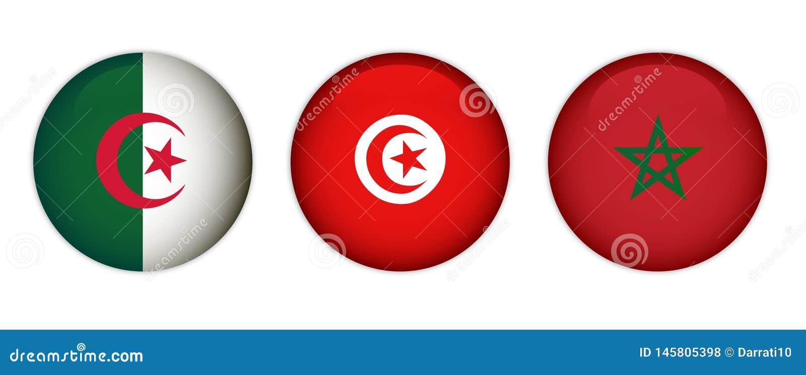 摩洛哥、阿尔及利亚和突尼斯的旗子
