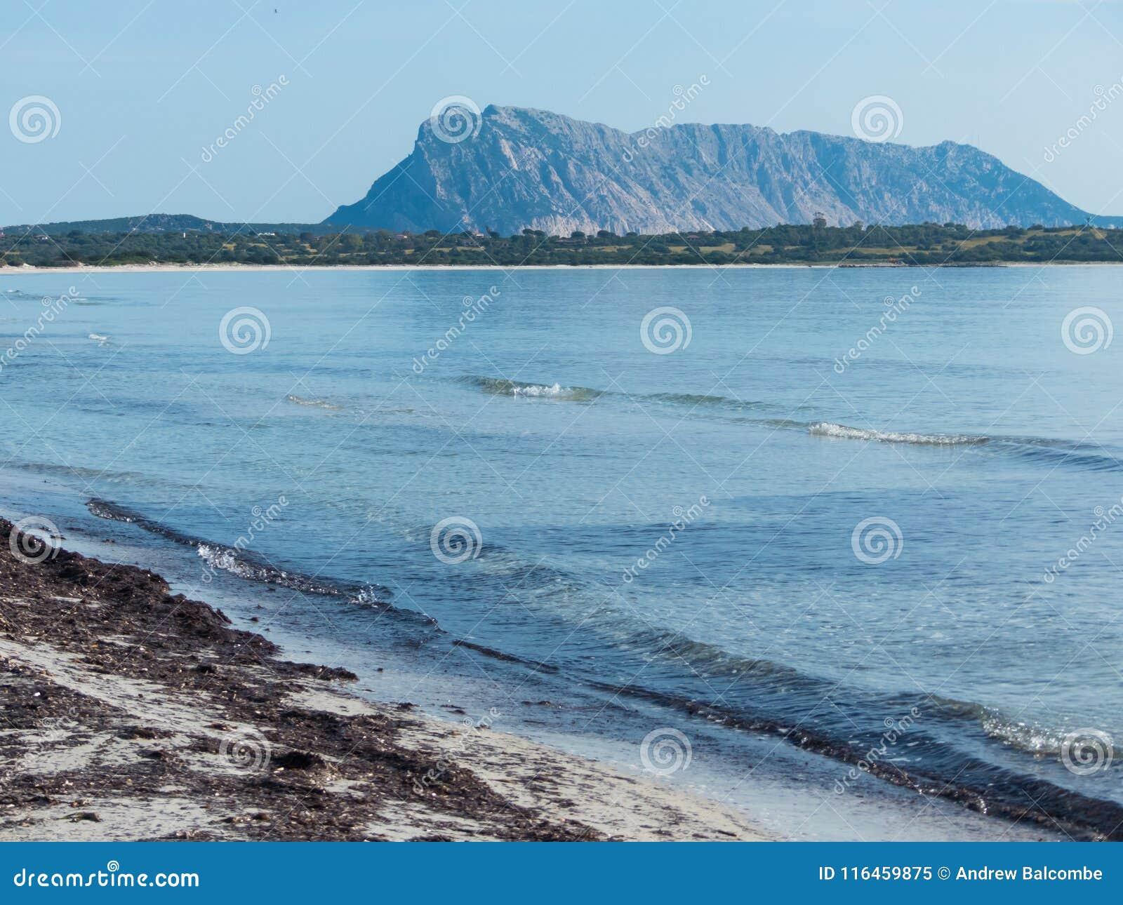 撒丁岛,意大利晴朗的白色海滩有海岛看法