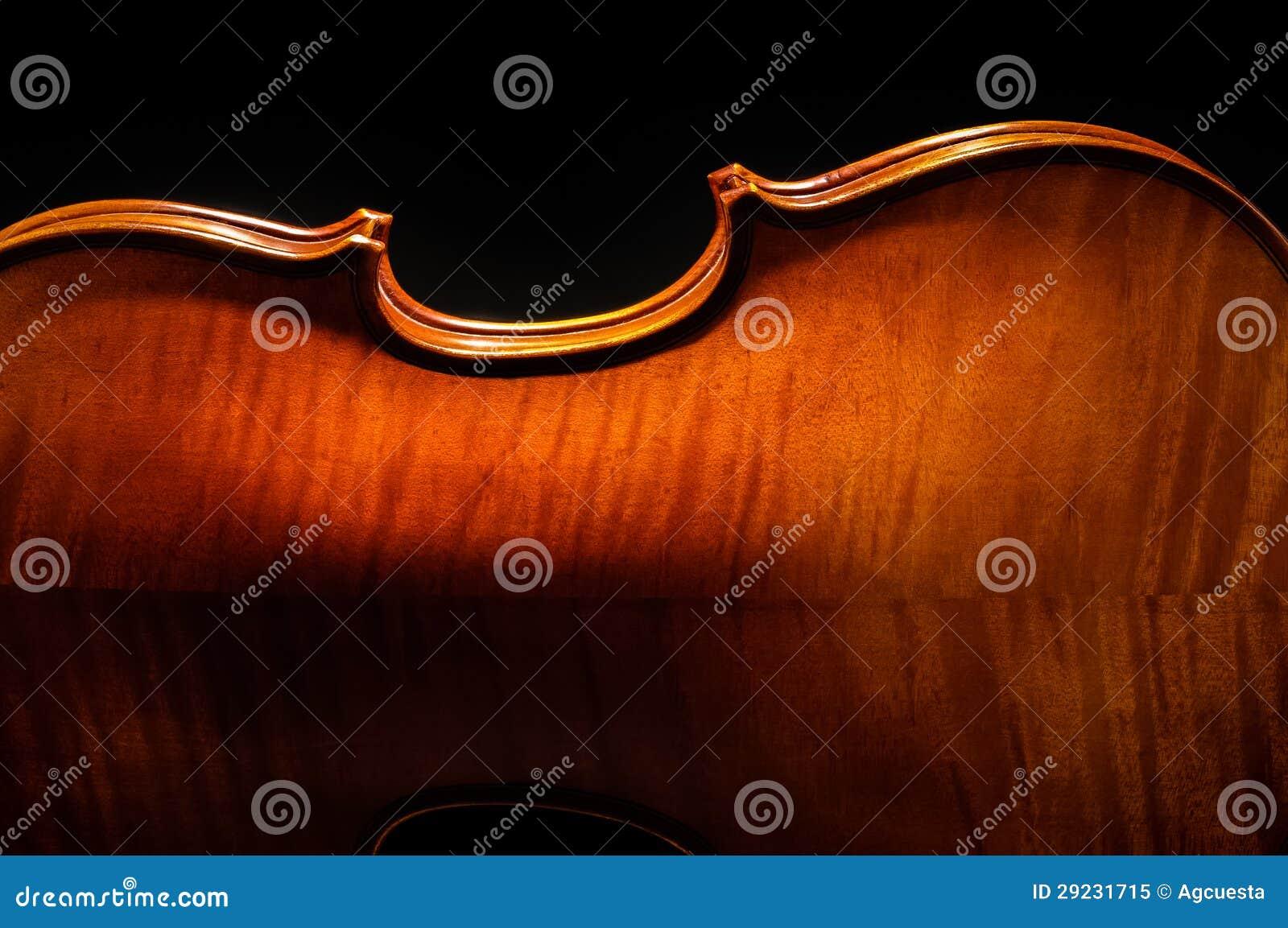 播种的小提琴背面图