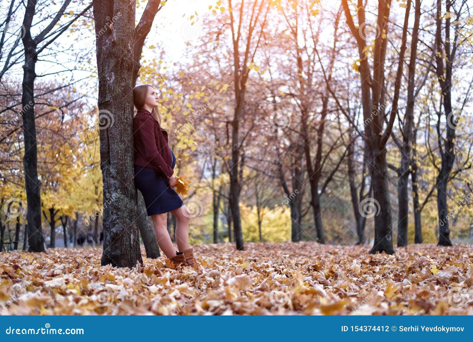支持树的沉思年轻孕妇 背景的秋天公园