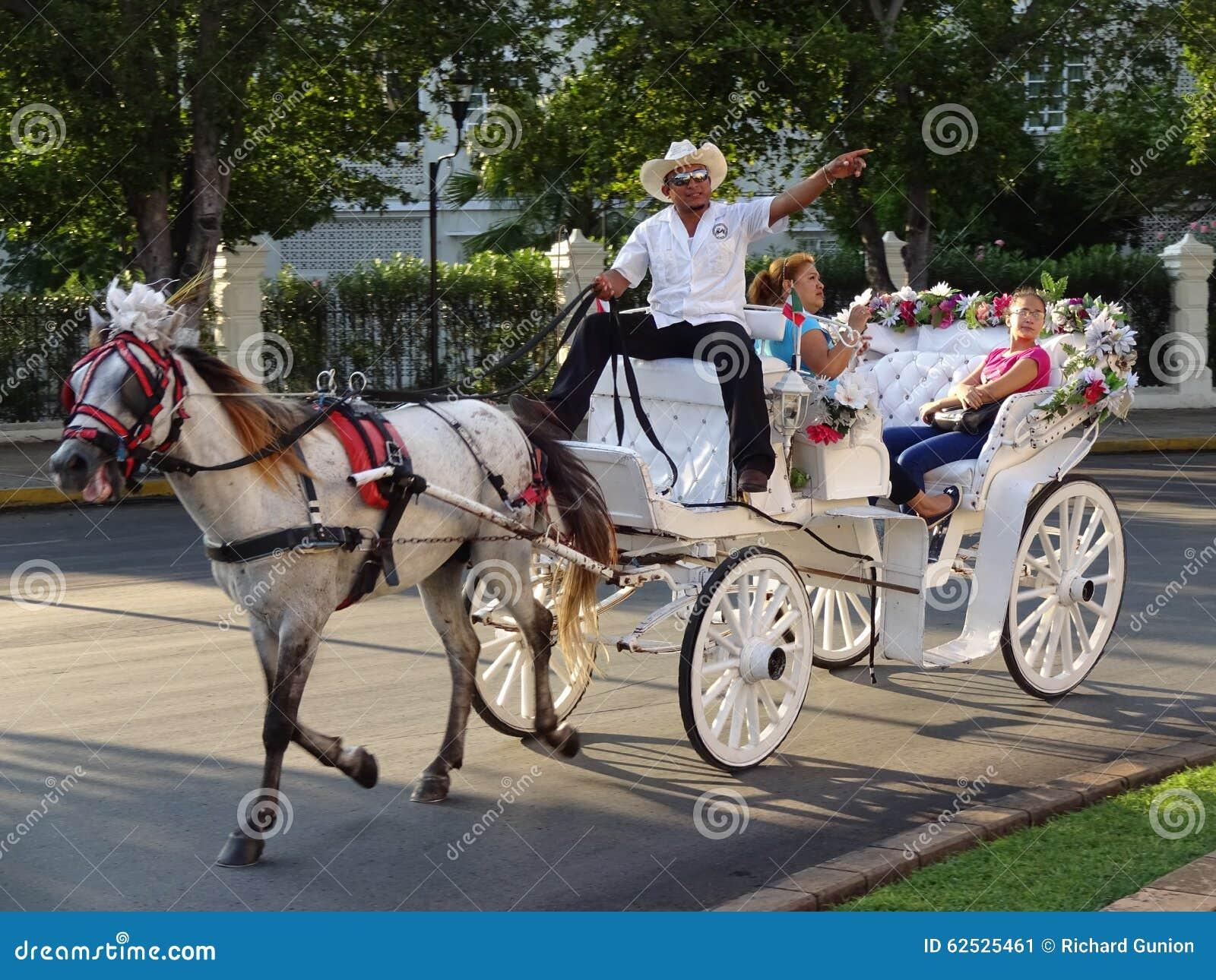 支架乘驾在梅里达尤加坦