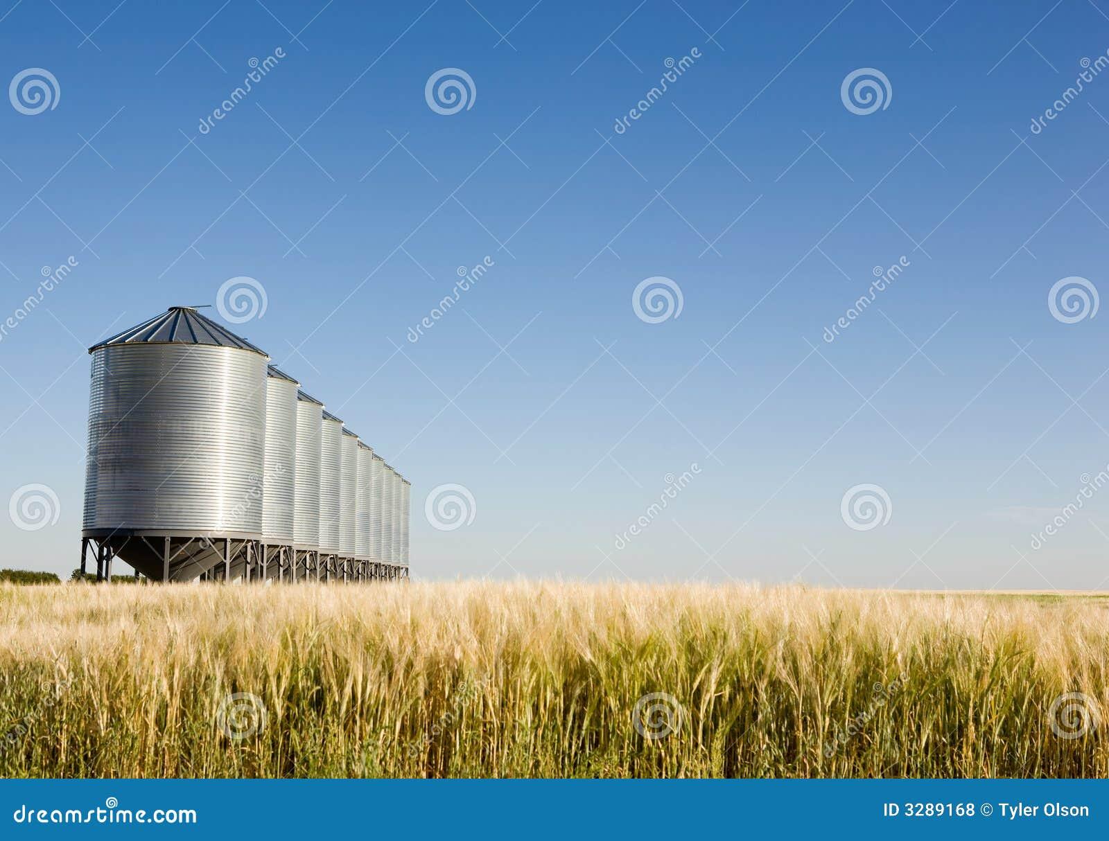 收获大草原