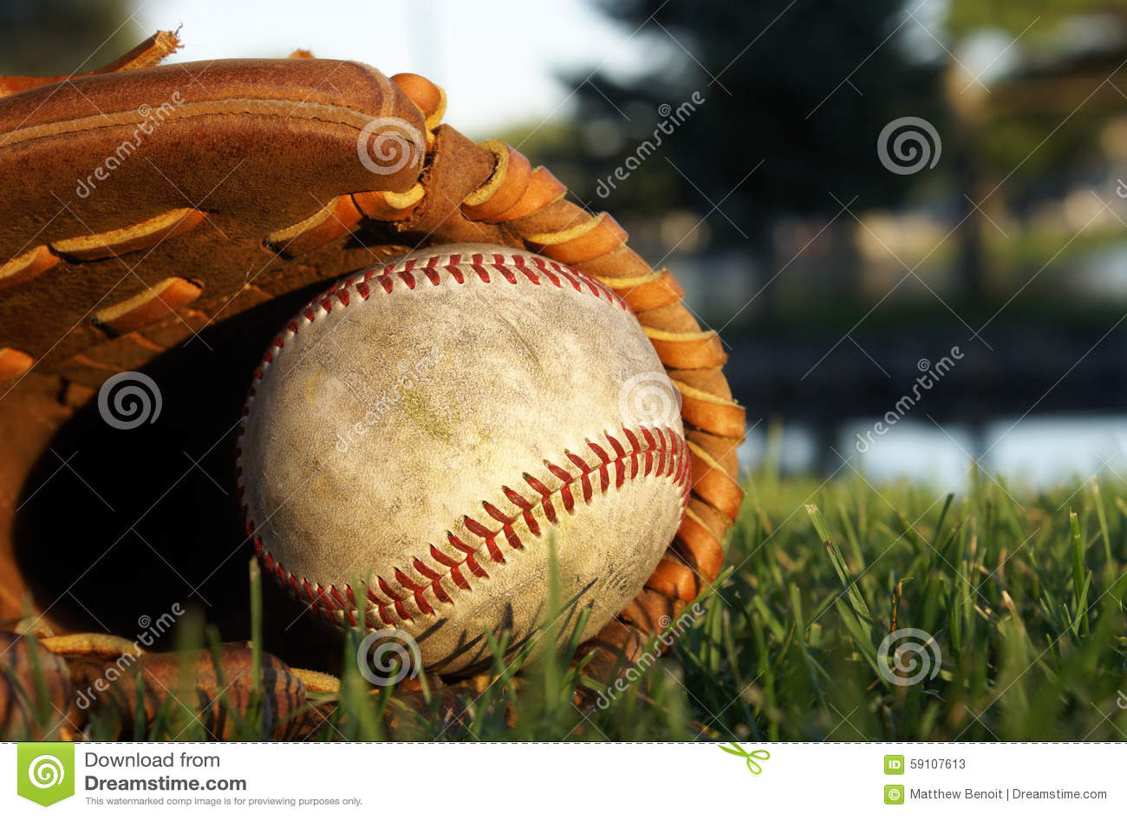 放置在草的棒球手套