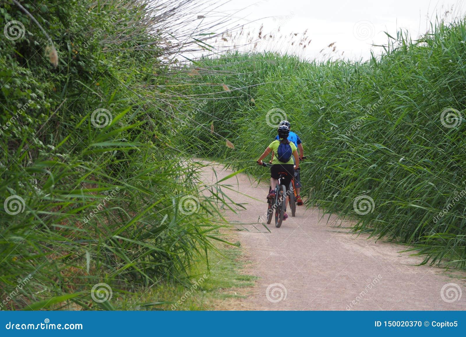 散步在湖,莱里达省的结合骑自行车者