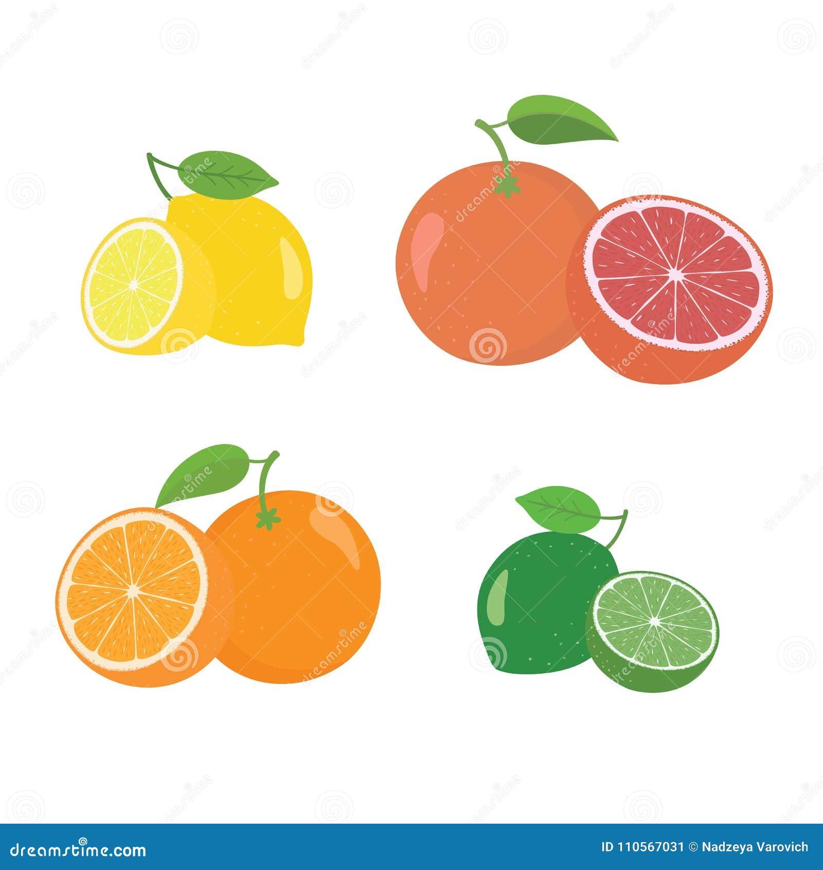 整个新鲜的柑橘水果和一半4个象摆正与橙色葡萄柚柠檬lyme