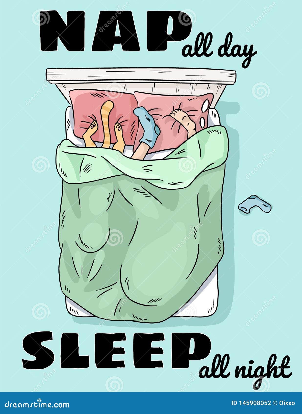 整夜小睡整天睡眠 睡觉在与猫的床上的人 在枕头滑稽的场面的腿 r 动画片样式图象