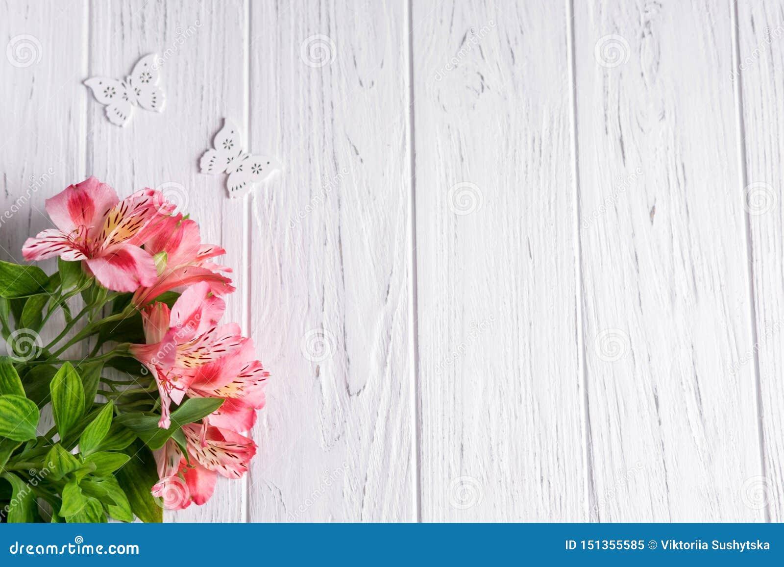 文本横幅的背景在与桃红色花和蝴蝶的轻的木背景 E ??