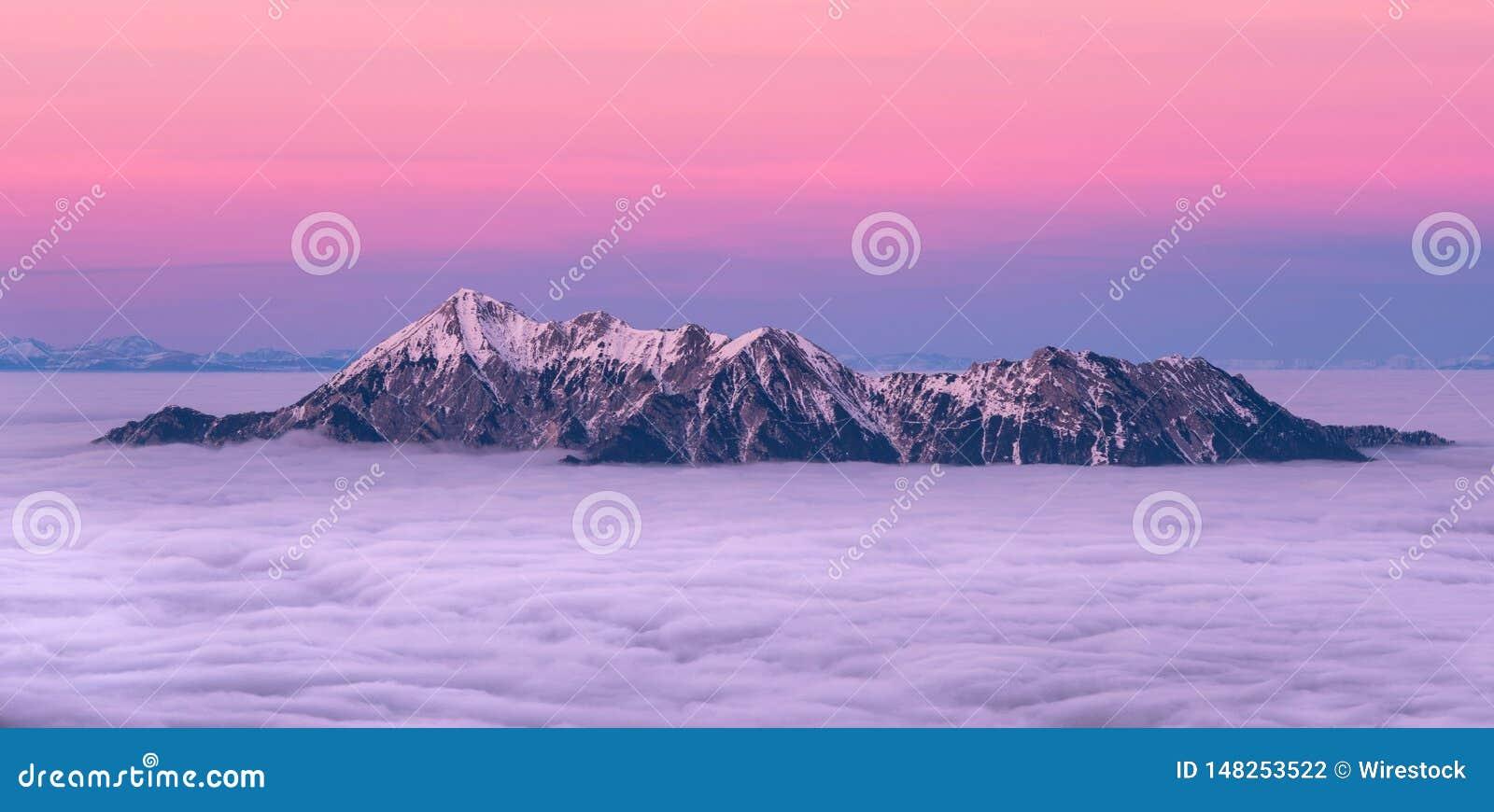 斯诺伊在云彩报道的山上面用美丽的桃红色天空