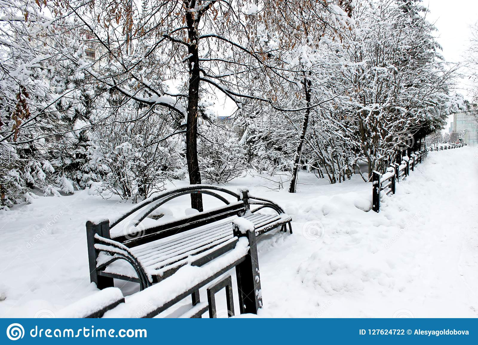 斯诺伊西伯利亚人公园