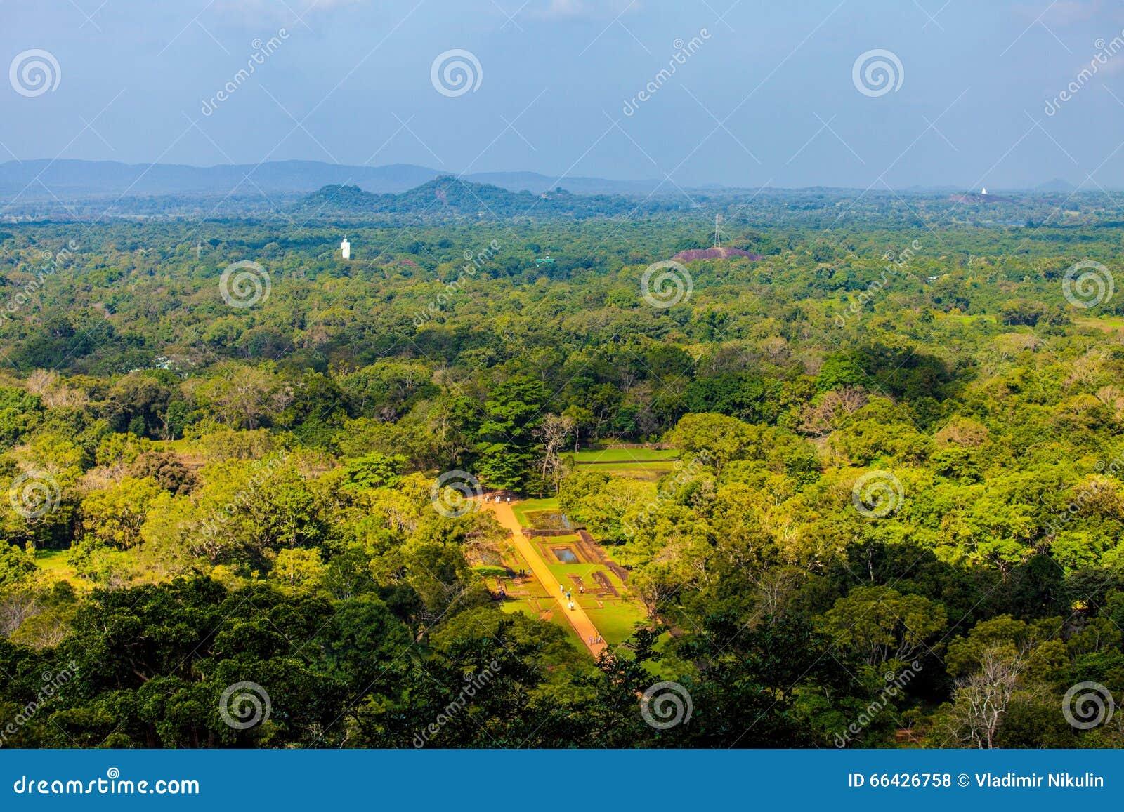 斯里兰卡热带森林和山.图片