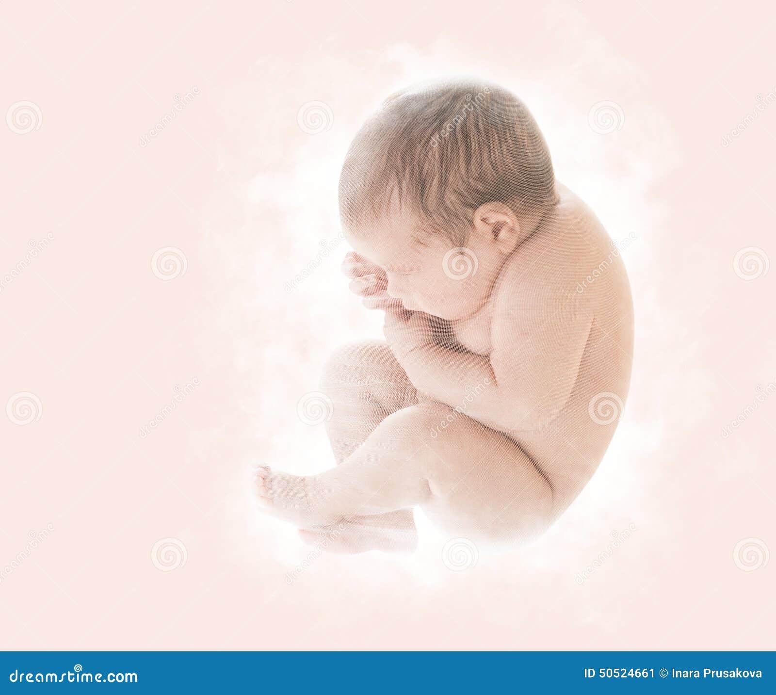 新出生的婴孩,在第九个月胚胎,人的胎儿, U的新出生的孩子