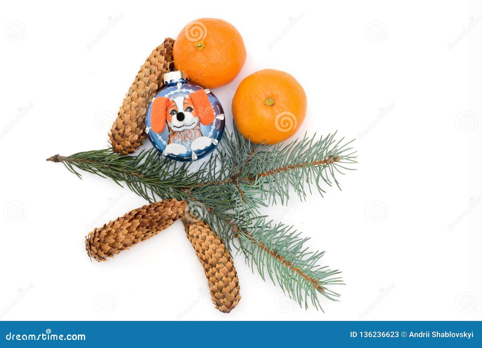 新年的玩具和蜜桔在白色背景被隔绝