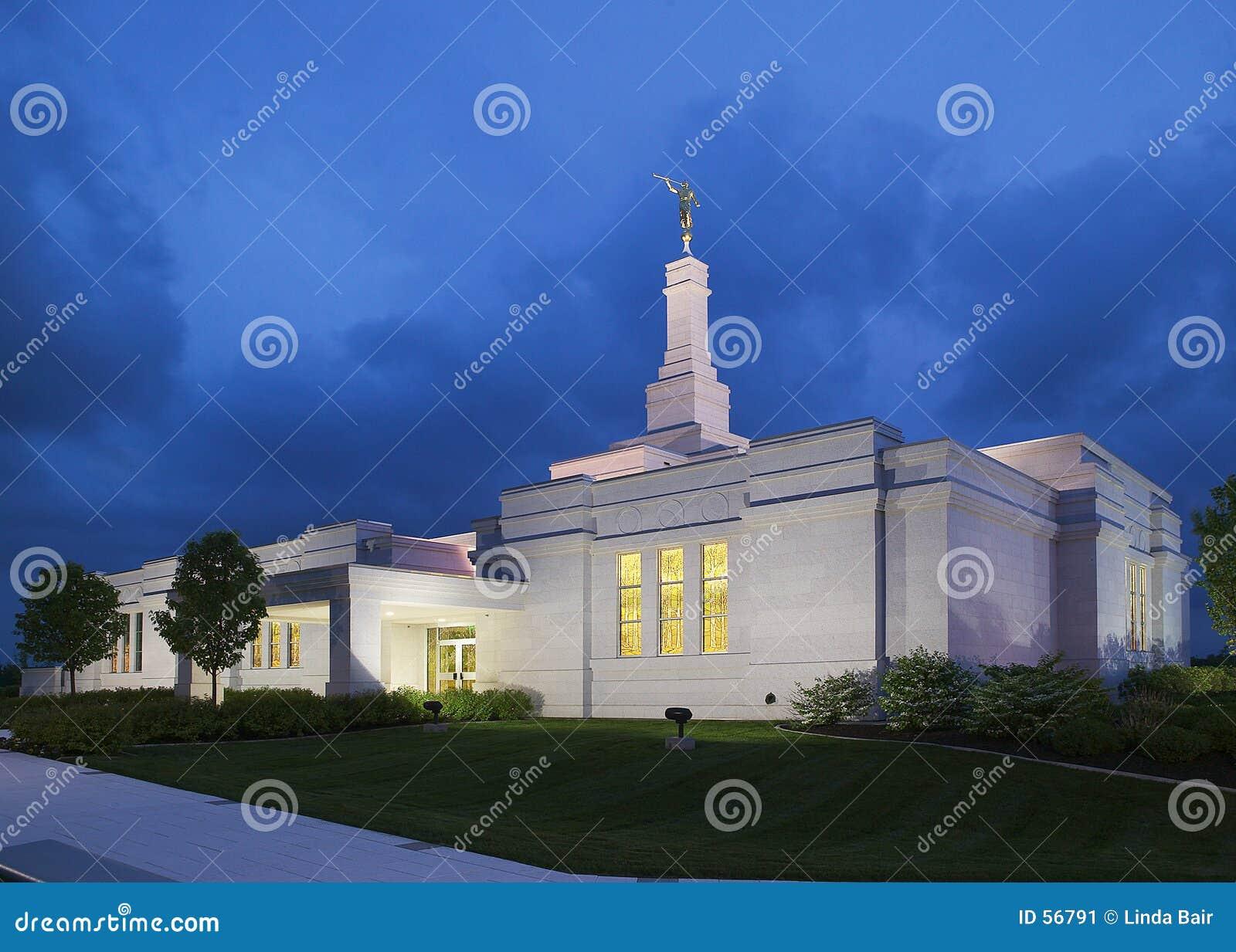 新的扇叶树头榈寺庙约克