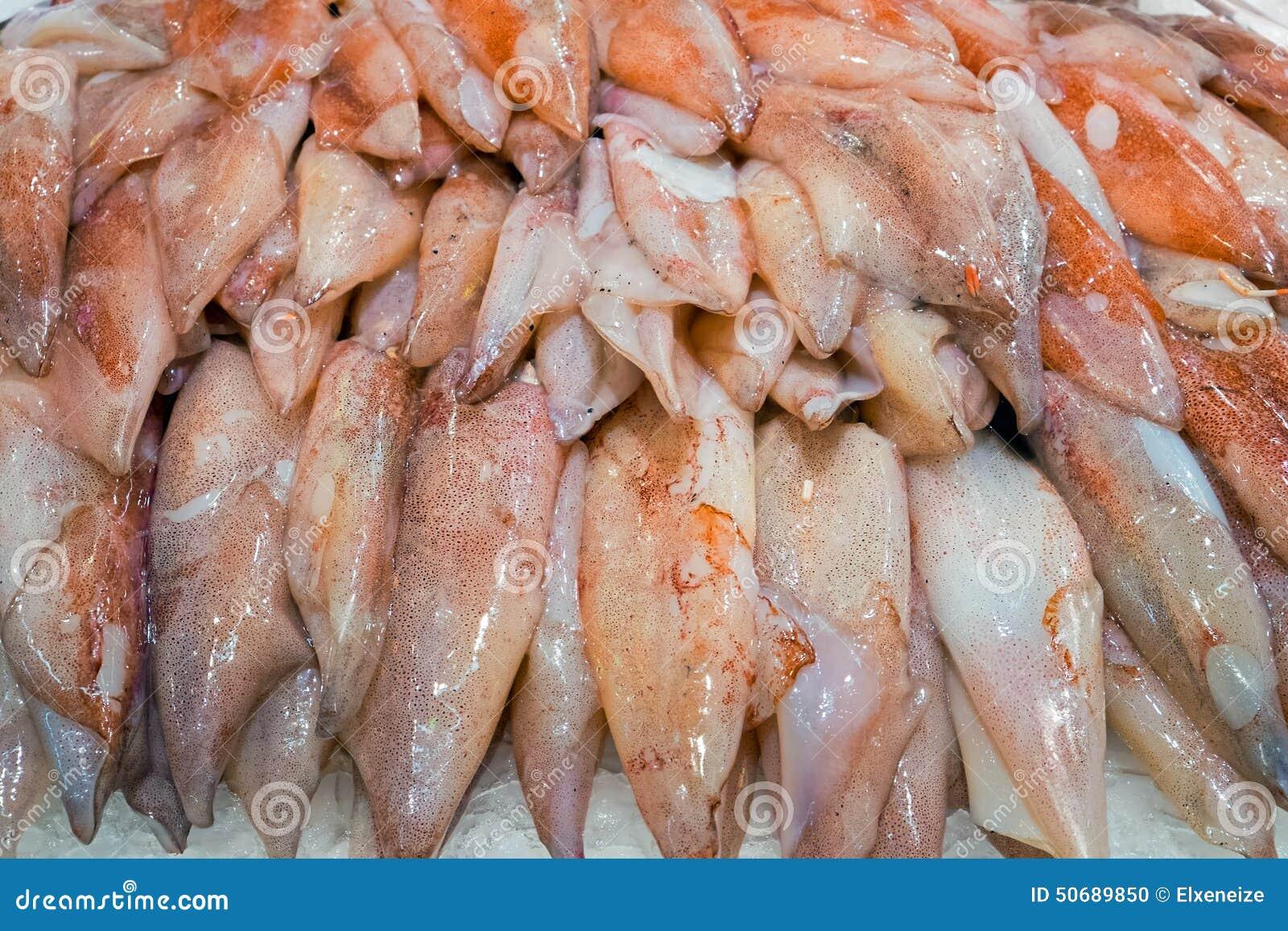 Download 新鲜的乌贼待售在市场上 库存照片. 图片 包括有 紫色, 水下, 触手, 海鲜, 海洋, 枪乌贼, 软体动物 - 50689850