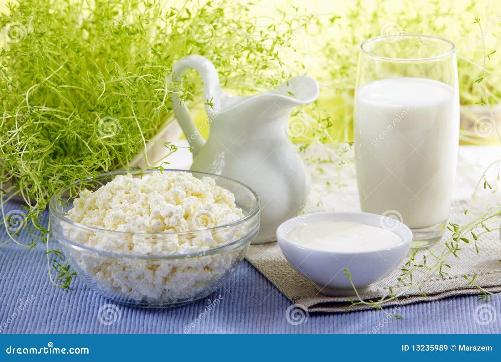 新鲜的奶制品